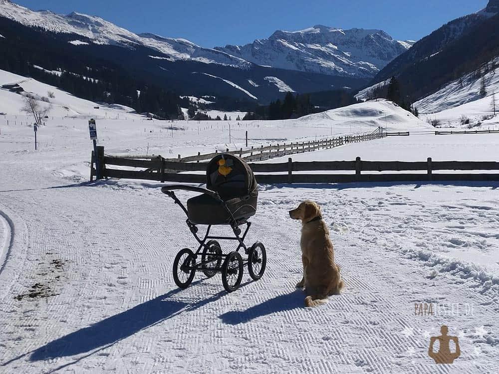 Der Knorr Classico im Schnee in den Bergen.