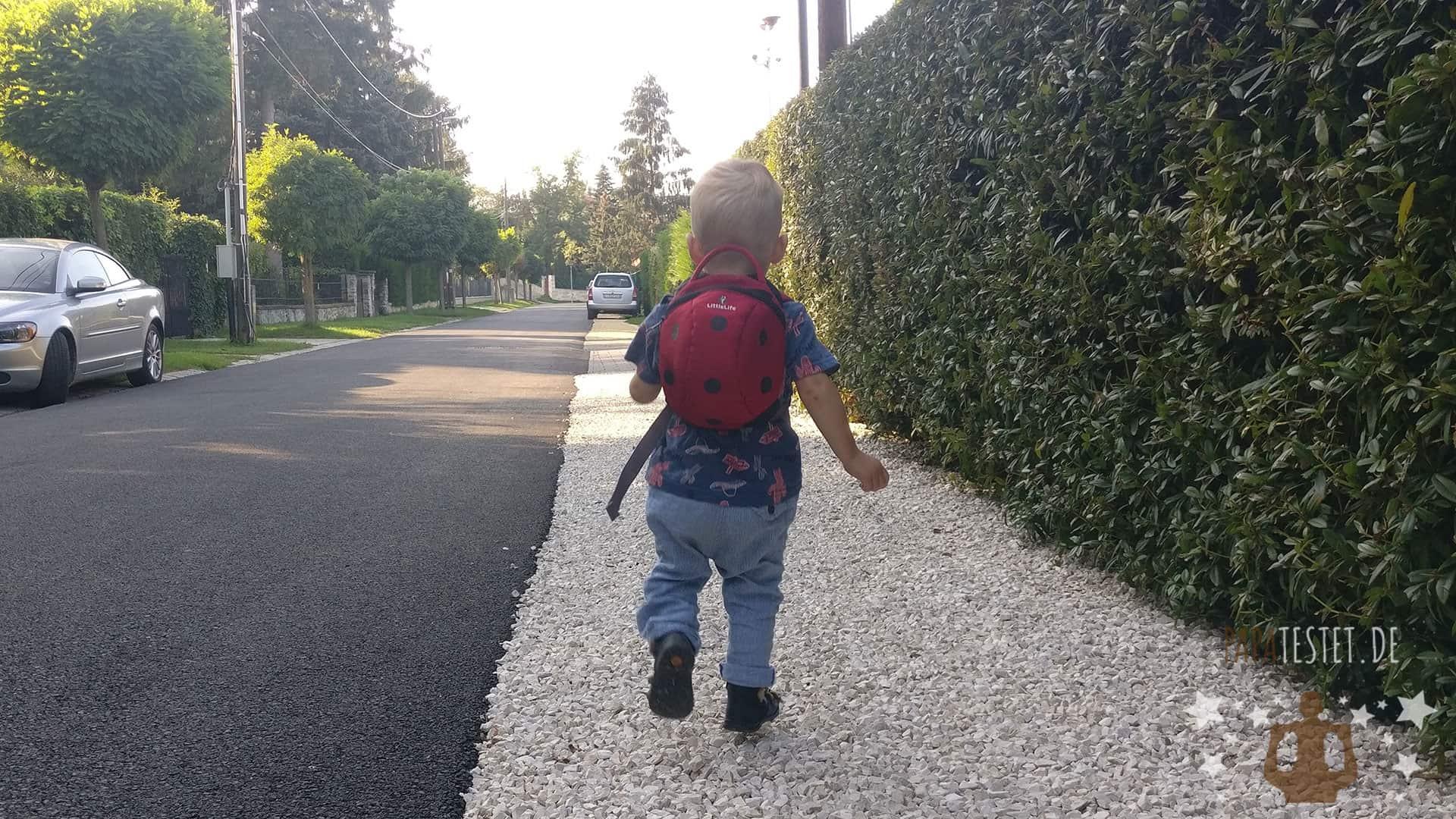 Der LittleLife Rucksack für Kleinkinder