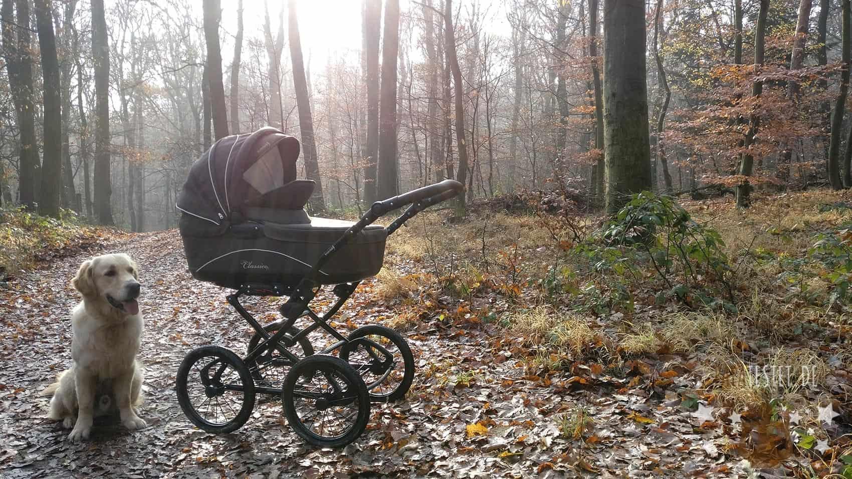 Kinderwagen: Den Besten finden & kaufen